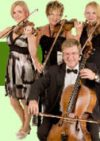 Spring Quartet 'the family string quartet'