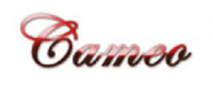 Cameo Chauffeur Services