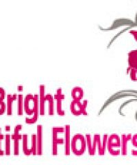 Bright & Beautiful Flowers