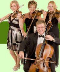 Spring Quartet 'the family string quartet'