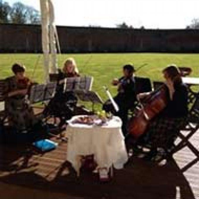 The Nightingale Quartet (String)